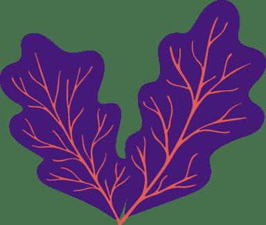 Abstract Oak