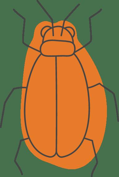 Halloween Beetle
