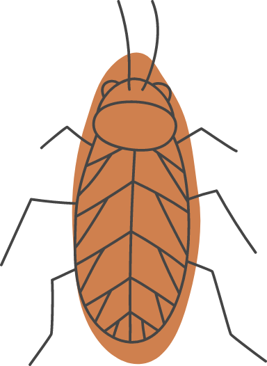 Halloween Cockroach