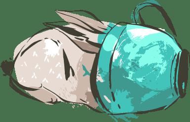 Hiding Bunny