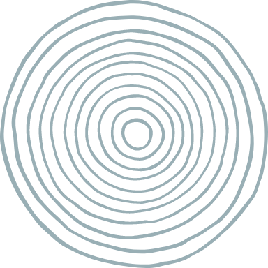 Concentric Circle Texture