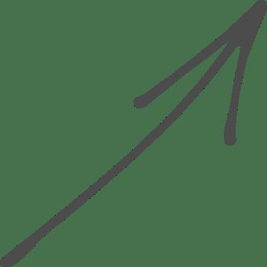 Soaring Arrow