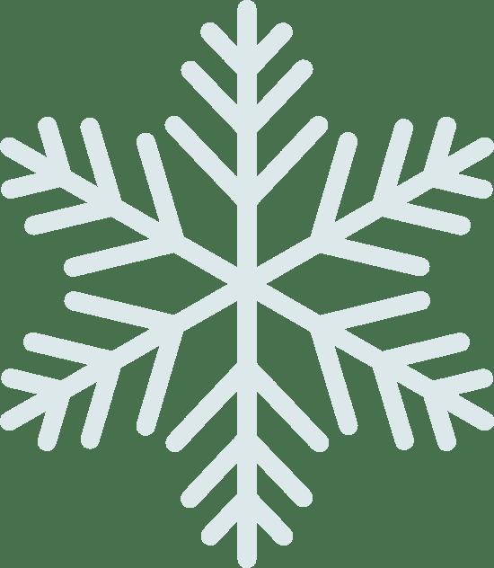 Arctic Snowflake