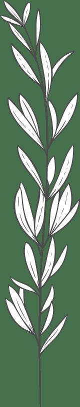 Leafy Sprig