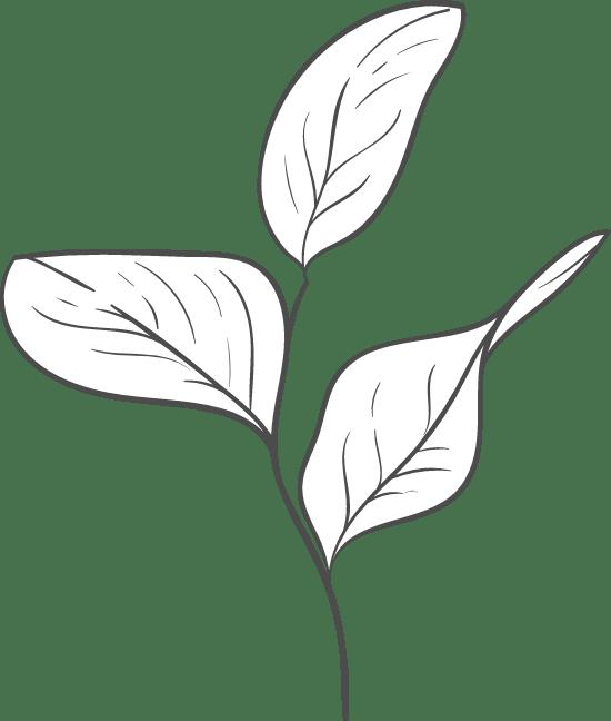 Stemmed Leaf Trio