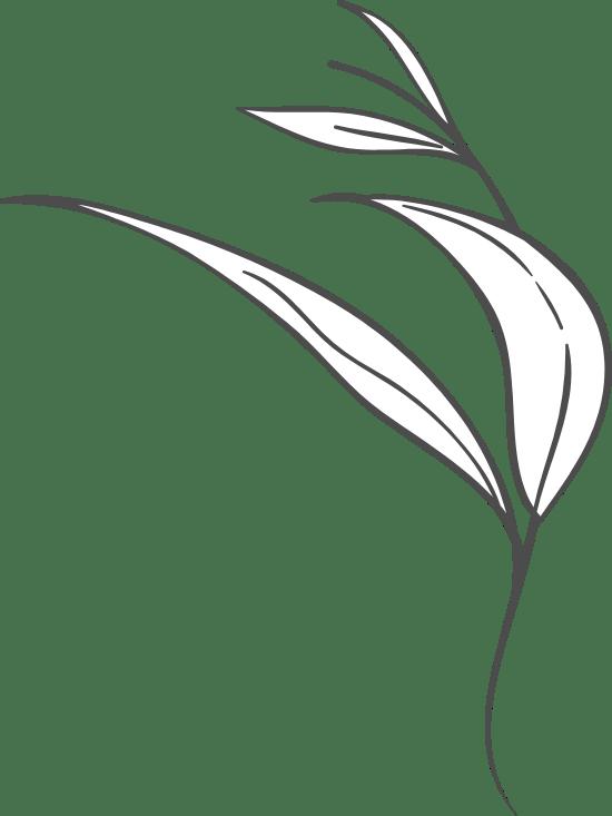 Wispy Leaf Arrangement