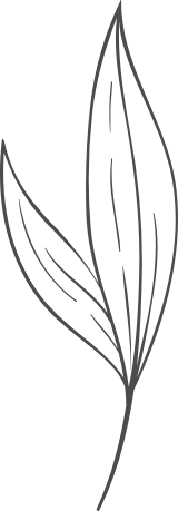 Simple Leaf Pair
