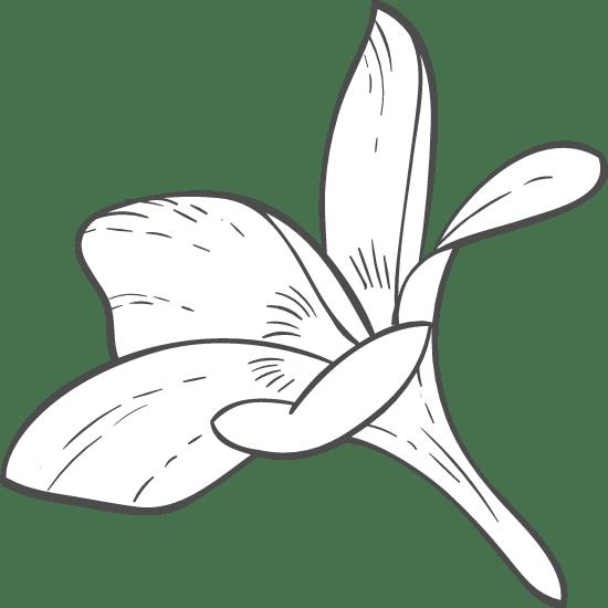 Blossom Side