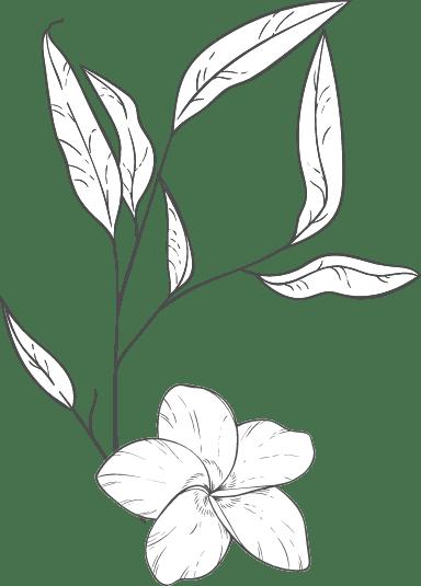 Plain Periwinkle Arrangement