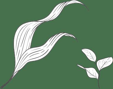 Wavy Leaf Arrangement