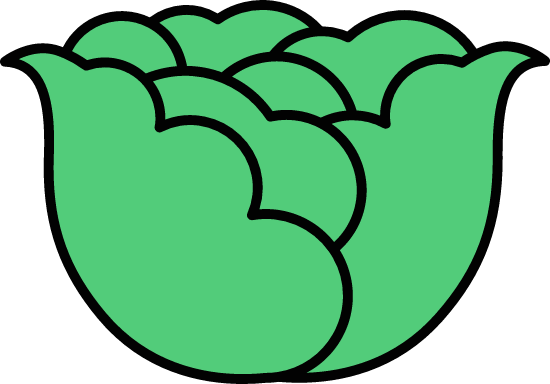 Outlined Cabbage