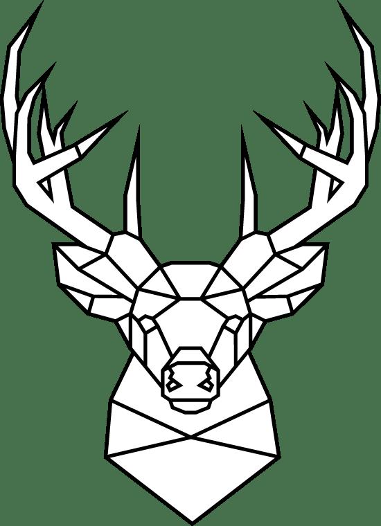 Geometric Whitetail