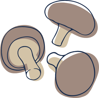 Sketched Mushrooms