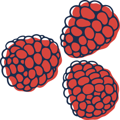 Sketched Raspberries