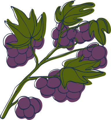 Sketched Blueberries