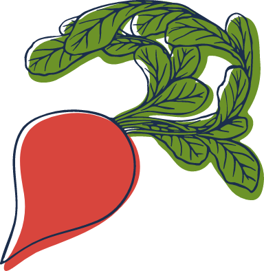 Sketched Radish
