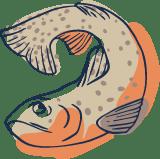 Whole Fish