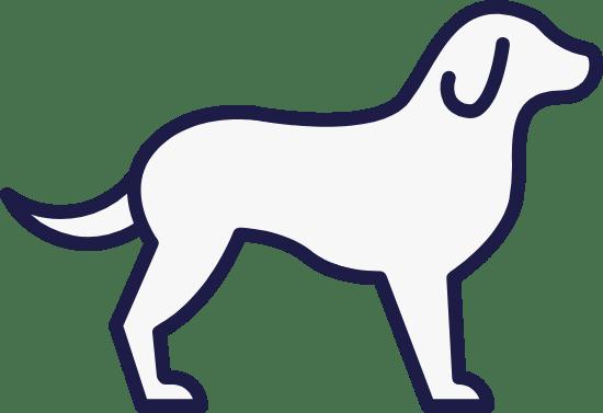 Iconic Dog