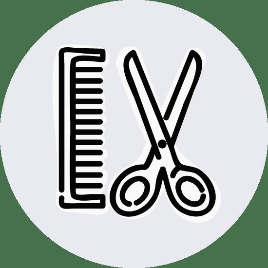 Basic Comb & Scissors