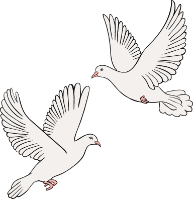 White Wedding Doves