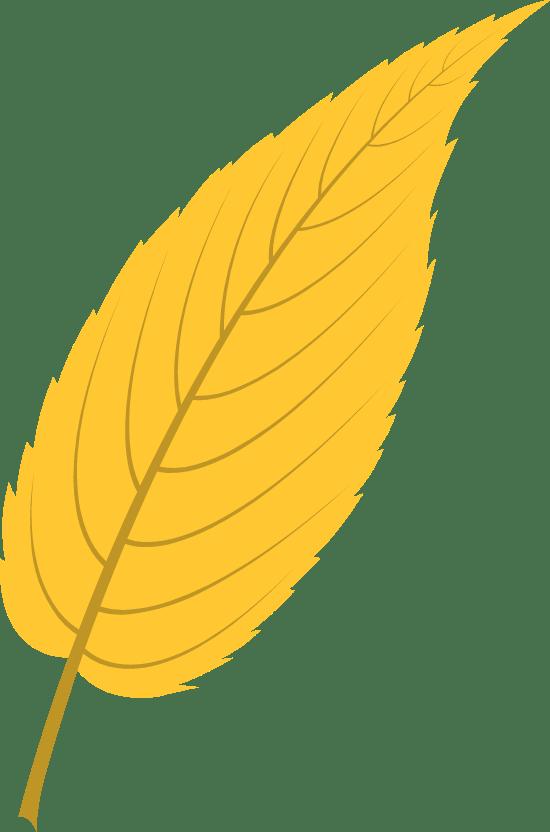 Vivid Cherry Leaf