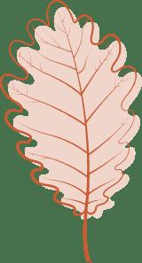 Pink Aspen Leaf