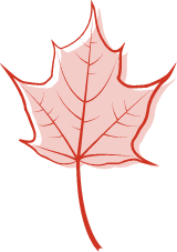 Pink Maple Leaf