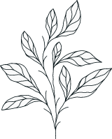 Illustrated Greenery