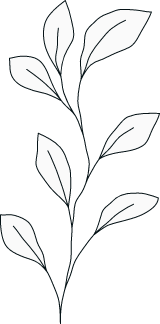 Illustrated Plant