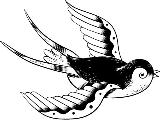 Swooping Swallow