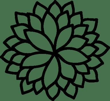 Lotus Burst