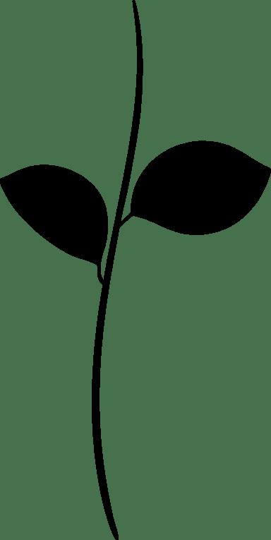 Two-Leaf Stem