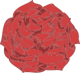 Thick Red Rose