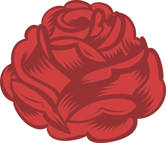 Full Red Rose