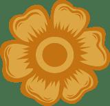 Broad Marigold