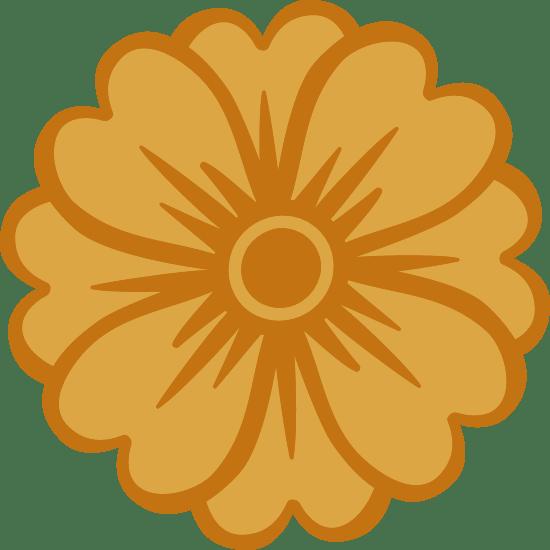Petalous Marigold