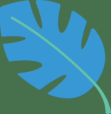 Split Leaf Palm
