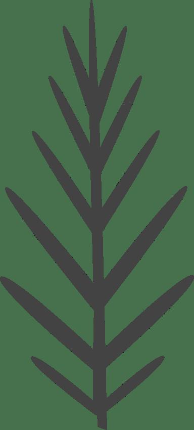 Nordic Bare Twig