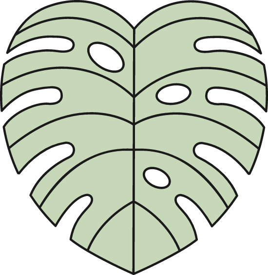 Plant Frond