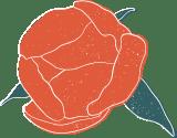 Peony Blossom & Leaves