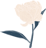 Light Peony with Stem