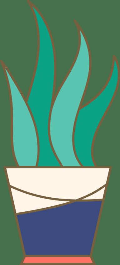 Potted Wavy Aloe