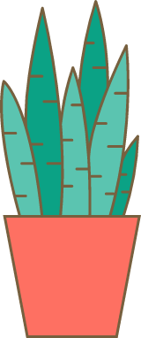 Potted Agave Plant