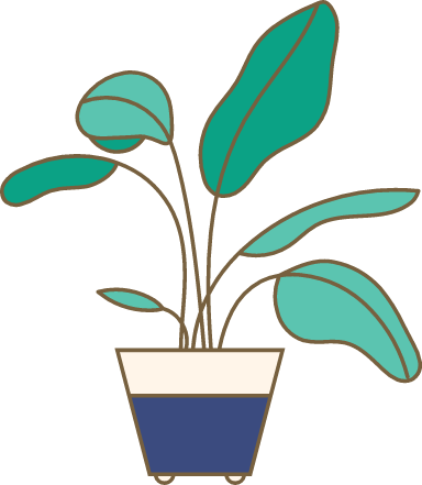 Potted Broadleaf Plant