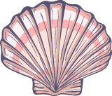 Marine Scallop Shell