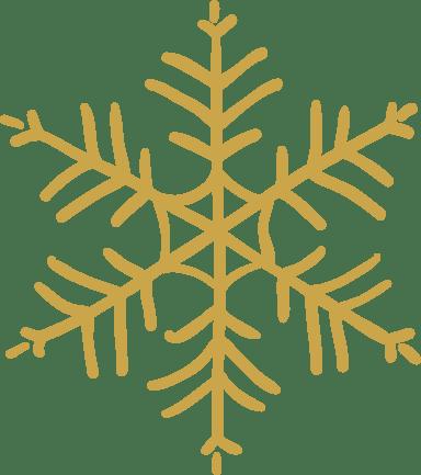 Spiny Snowflake