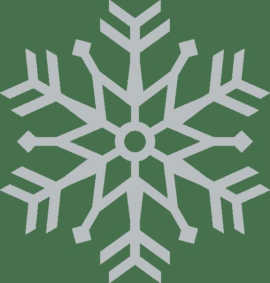 Bold Snowflake