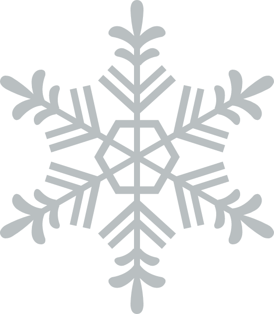 Spiked Snowflake