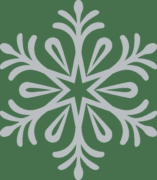 Blooming Snowflake