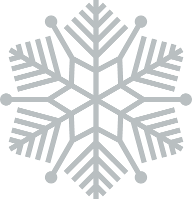 Evergreen Snowflake